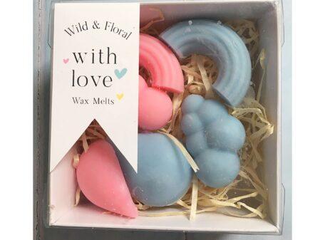 Rainbow soy wax melt gift set